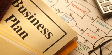 BUSINESS failure, SMART CEO