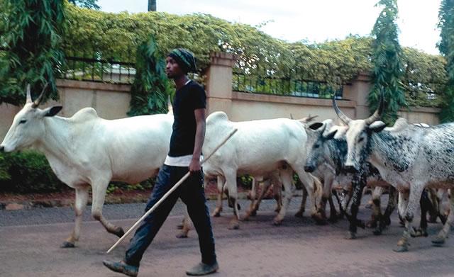ECOWAS, southern kaduna, kaduna